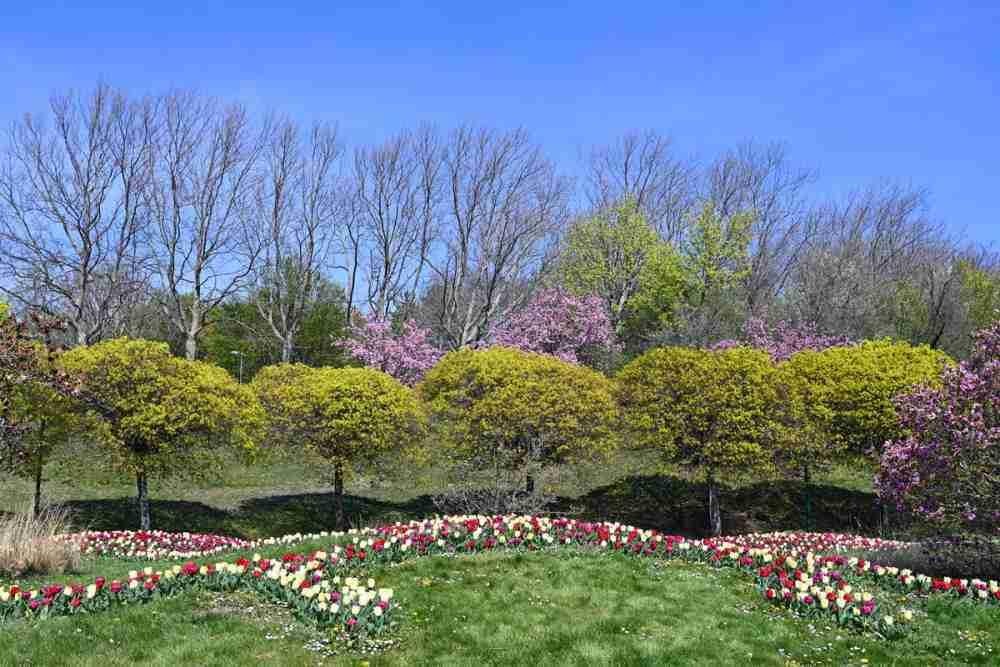 Kurpark Oberlaa und Japanischer Garten in Vienna in Austria